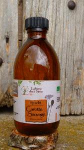 Hydrolat de Carotte sauvage